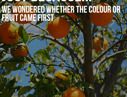 Just Because…Did the colour or fruit come first?